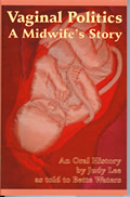 Vaginal Politics - A Midwife's Story book cover